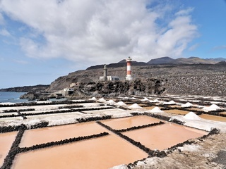 salt extraction with the pink in a lava landscape on La Gomera