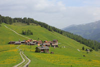 Old village Obermutten and green meadow with yellow flowers, Switzerland.