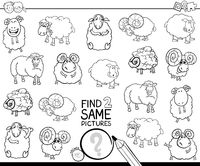 find two same sheep characters coloring book