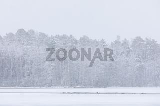 Heavy snowfall at lake shore landscape