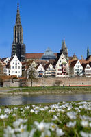 Ulm, Central Library and Minster