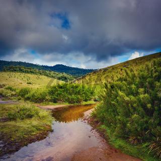 The Horton Plains. Beautiful landscape. Sri lanka