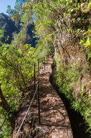 Hiking path to Caldeirao Verde, Madeira, Portugal