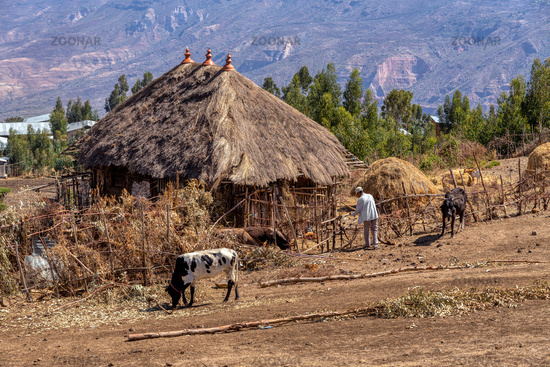 Ethiopian farmer in the countryside
