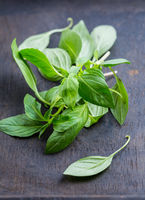 Image of Thai basil leaves