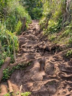 Very difficult path to Queens Bath on coast near Princeville Kauai