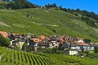 Winzerdorf Epesses in der Weinbauregion Lavaux