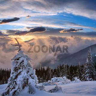 Sunset winter mountain landscape, Carpathian