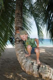 Boy on palm tree