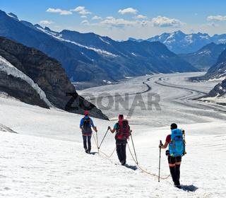 Alpinisten am Seil überqueren den Jungfraufirn,Grindelwald, Berner Oberland, Schweiz