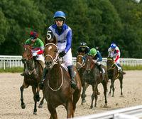Finish horse race for the prize of Ogranichitelni.