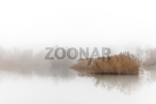 Hoboken, Belgium - A small lake in the mist