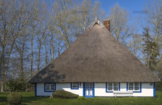 Old reed house under preservation order