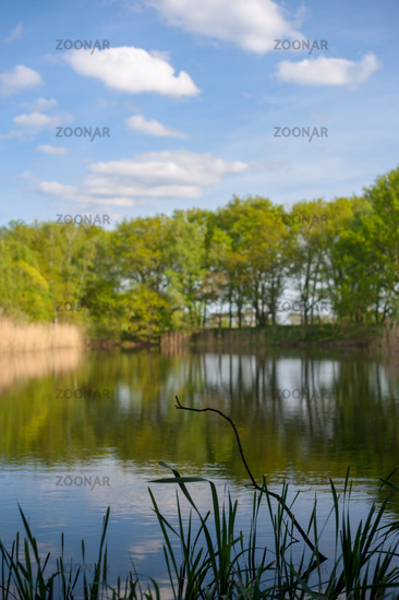 Pond, named Haarteich, in nature reserve Boberger Niederung in Hambrg, Germany at day.