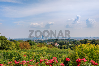View from Reisenberg over city of Vienna