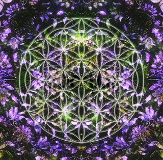 ornamental structure and flower of life. Floral ornament background.