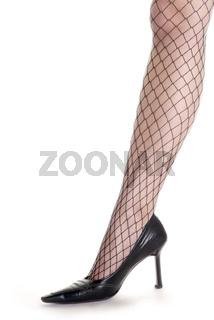 Frauenbein mit Netzstrumpf   womans leg and net stocking