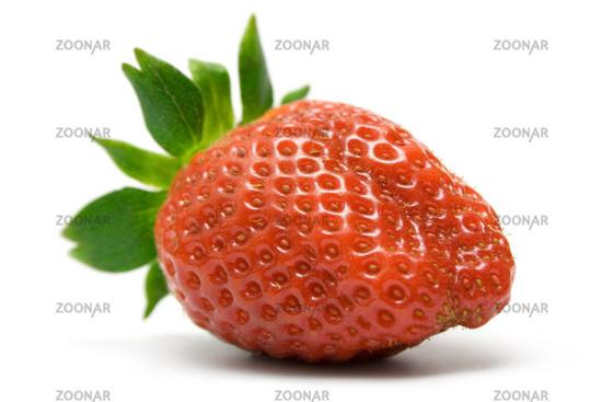 Einzelne Erdbeere