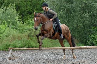 Reiterin auf braunem Pferd beim Sprungtraining