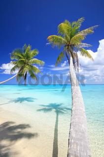 secret beach 7.jpg