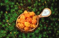 Moltebeeren, Torfbrombeeren (Rubus chamaemorus) in einer handgefertigten samischen Trinkschale aus Birkenholz, Lappland