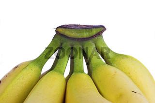 Bananen; bananas