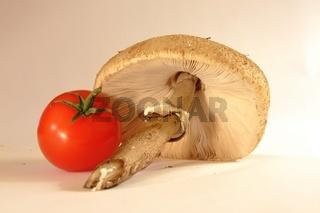 tTomate und Pilz,tomato and fungus