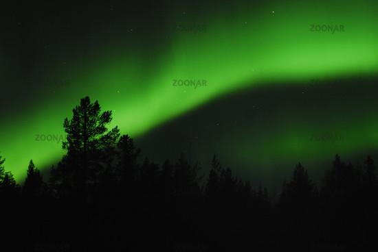 Northern Lights (Aurora borealis) in Gällivare, Lappland