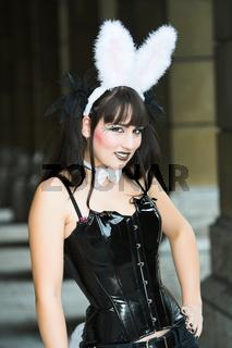 Hey Bunny