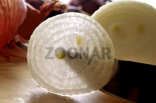 Zwiebel, Onion