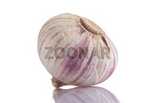 Knoblauch, garlic