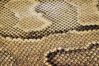 Schlangenhauttextur