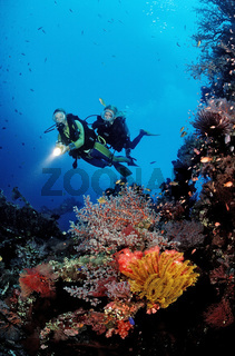 Taucher, Schiffswrack, Liberty, Bali, Tulamben, Indischer Ozean