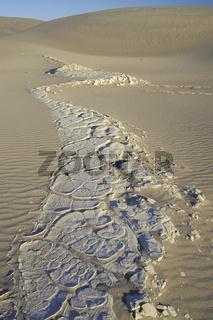 Desert, Sand dunes, Sandduenen,