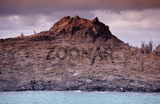 Galapagos, Volcano Santiago, Isle James