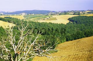 Val d'Orcia Orcia valley Tuscany Toscana, Landscape of Tuscany