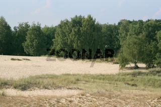 Nature reserve 'Boberger Dunes'