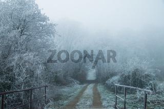 Dezembermorgen