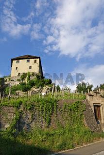 Burg mit Weinreben