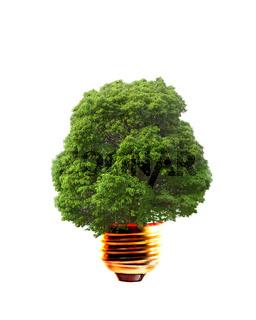 Alternative Energien, Energy conceppt