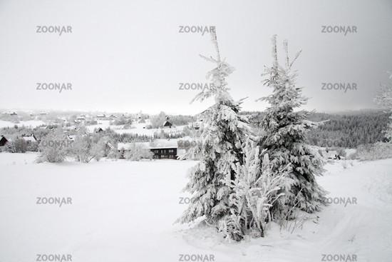 Blick auf Zinnwald im Osterzgebirge