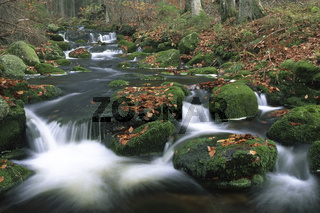 kleine ohe, mountain torrent, wildbach, np bavarian forest, bayrischer wald, bayner, bavaria, germany, deutschland,