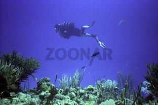 Taucher deep blue