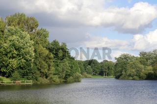 Trees at a pond | Mühlenteich in Reinbek