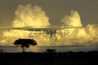 Wolken über Afrika