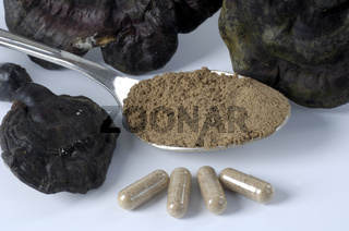 Reishi powder, cut out, object, Glaenzender Lackporling Pulver, Ganoderma lucidum, Heilpilze, Freisteller, Objekt