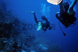 Taucher am Riff