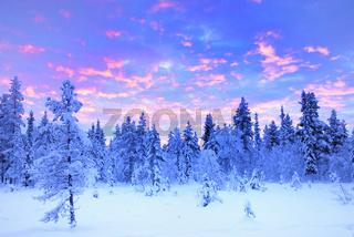 sunrise, sonnenaufgang, winter landscape, winterlandschaft, lapland, lappland, sweden, schweden, swedish lapland