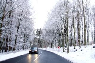 Straße im Wald