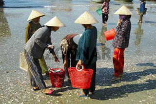 Fischerfrauen beim Handeln, Mui Ne, Vietnam